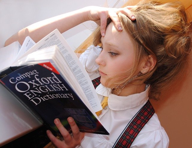 英語の辞書を読む